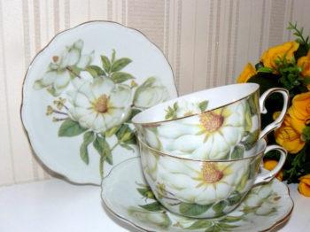 Cesti de cafea flori de magnolie
