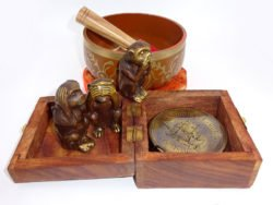 Busola bol tibetan maimute intelepte