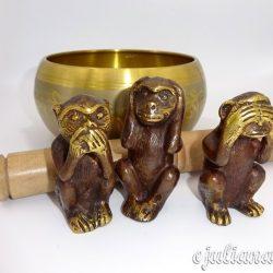 Bol tibetan maimute intelepte