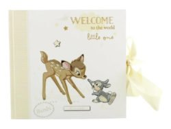 Album foto Bambi Disney