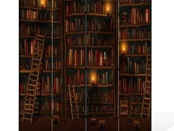 Paravan despartitor decorativ biblioteca cu carti