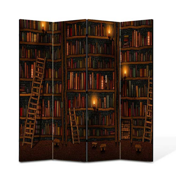 Paravan despartitor biblioteca cu carti